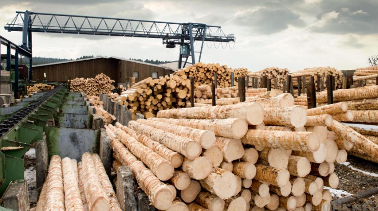 sawmill blog picture-1.png
